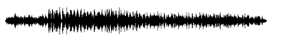 Original audio waveform
